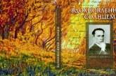 «ВДОХНОВЛЕННЫЙ СОЛНЦЕМ. ПОЭЗИЯ И ЖИВОПИСЬ АЛЕКСАНДРА ЧИЖЕВСКОГО». Представление книги Валерия Байдина (Франция) .
